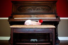 newborn photography - with a vintage piano