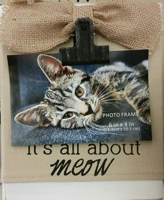 """Photo Frame. """"It's All About Meow"""". Found at Big Lots."""