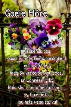Morning Greetings Quotes, Morning Messages, Good Morning Wishes, Good Morning Quotes, Lekker Dag, Evening Greetings, Afrikaanse Quotes, Goeie More, Special Quotes