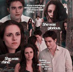 Twilight Poster, Twilight Saga Quotes, Twilight Saga Series, Twilight New Moon, Twilight Series, Twilight Movie, Twilight Bella And Edward, Edward Bella, Edward Cullen