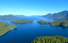 Spirit bears of British Columbia's Great Bear Rainforest [PICs] - Matador Network