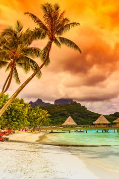 Stunning Bora Bora Beach Scenery and Facts. I totally love these photos! These bungalows and beaches are amazing. I totally can just stare at these photos all day long lol.