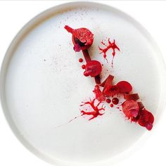 "Gastro Art (@gastroart) sur Instagram : ""Beetroot. Another gorgeous dish uploaded by @marco_tola_chef_ #gastroart"""
