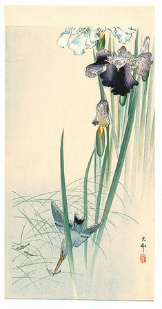 Ohara Koson: Iris and Kingfisher