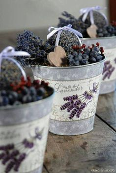 Lavender in zinc buckets