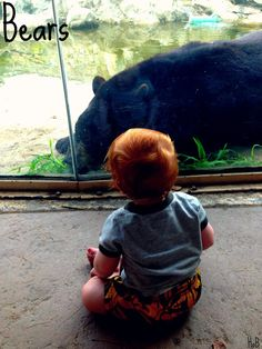 Baby's First Trip to the Zoo - a great learning adventure to have with your baby - House of Burke