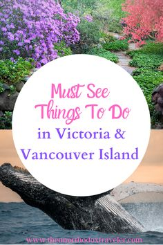Must See in Victoria BC| Things To Do In Vancouver Island | Visit British Columbia | Bucket Lists | Best Places To Travel | BC Travel | Canada Travel Guide | Travel With Kids | Vancouver Island Things To Do | Beaches Vancouver Island | Victoria BC | Butchart Gardens | Vancouver Island | Victoria Island Things To Do | Guide | Solo Travel | Couples Vacation Ideas | Family Travel | Whale Watching | Best Of | #victoria #vancouverisland #britishcolumbia #canadatravel Victoria Vancouver Island, Victoria Island, Couples Vacation, Vacation Ideas, Travel Couple, Family Travel, Travel Ideas, Travel Guide, Stuff To Do