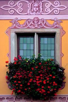 Obernai, Bas-Rhin, France... @ivannairem .. https://tr.pinterest.com/ivannairem/windows/