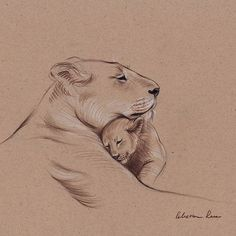 """""""A Mother's Pride"""" Lioness and cub original pencil drawing. Have as tattoo saying """"The lioness does not try to be the lion. She embraces her role as the lioness. She is powerful, strong, and nurturing. She does not mistake her meekness for weakness. Tattoo For Son, Tattoos For Kids, Tattoos For Daughters, Mom Tattoos, Tattoos To Honor Mom, Tatoos, Animal Tattoos For Women, Tattoo Mom, Lioness And Cub Tattoo"""