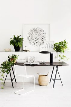 White walls, brown table, black and white wall art, white chair, and multiple planters