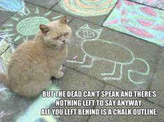 Lolol Three Days Grace - Chalk Outline :)