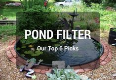 Read carefully our pond filter system reviews from expert and choose the best affordable pond filters for your koi pond, garden pond, fish pond...