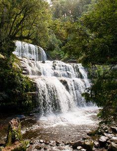 Liffey Falls - Waterfall in Tasmania Beautiful Waterfalls, Tasmania, Australia Travel, Amazing Nature, Lakes, Wonders Of The World, Mother Nature, Bodies, Places To Go