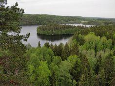 Finland, River, Nature, Outdoor, Outdoors, Naturaleza, Nature Illustration, Outdoor Living, Garden