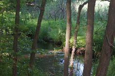 Dorrs Pond Manchester NH