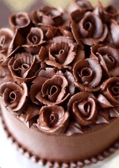 gorgeous! sponge filled cake layers with chocolate ganache frosting and roses from @Z Oë François (has instructions for piping the roses and leaves)