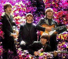 Beatles I like the flowers :)