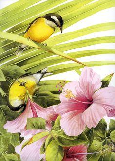 By Marjolein Bastin, Dutch nature artist
