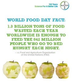 1.3 billion tons of food wasted each year worldwide is enough to feed the 842 million people who go to bed hungry each night.