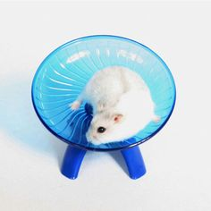 Small Animal Hamster Exercise Flying Saucer Wheel Gerbil Running Play Toy