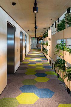 gunnersen designerply office inspiration plywood