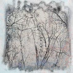 Adagio V by Sia Aryai | Fine Art Prints | GalleryDirect