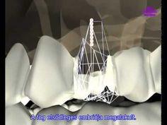 Technológia a fogak regenerálásához (Grabovoj)