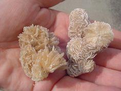 1000+ images about Gypsum (Selenite & Desert rose) on ...
