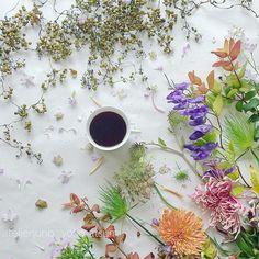Autumn Chic  ・ ・ ・ 日が落ちるのがはやくなりました。 秋ですね〜〜 初秋の美しいお花たちで花あそび ・ ・ ・ #mystory_cups  #coffeeandseasons  #still_life_gallery  #tv_stilllife  #cups_are_love  #9vaga_shabbysoft9  #tv_living  #tv_lifestyle  #stilllife_archive  #mystory_shots  #shutter_memory  #igcoffee  #naughtyteas #your_life_etc  #myeverydaymagic  #momentsofmine #ir_lifetime  #styleonmytable  #9vaga_coffee9  #jj_still_life #tv_closeup  #petalsandprops #sunday_sundries  #inspiredbypetals  #mystillsundaycompetition  #うちカフ...