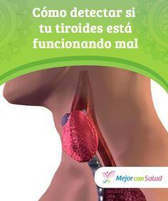Cómo detectar si tu #tiroides está #funcionando mal  Las complicaciones de la glándula tiroides pueden pasar desapercibidas, ya que se confunden con otras dolencias comunes que suelen afectar a nuestra salud general. Ante cualquier sospecha, deberemos acudir al #especialista #RemediosNaturales