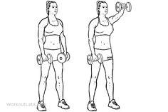 Day 4 [Shoulders]: #2 Forward / Front Shoulder Dumbbell Raises