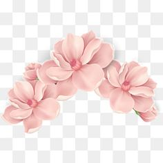 65 New Ideas Flowers Vector Png Blooming Flowers, Pink Flowers, Paper Flowers, Photoshop Elementos, Rose Flower Png, Free Watercolor Flowers, Painting Flowers, Overlays Picsart, Floral Border
