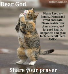 Dear God!  Please keep my family, friends and loved ones safe. Please watch over them always, and let good health, happiness and good fortune befall them. AMEN!