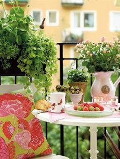 gemütlicher kleiner Balkon Frühling kleine Blumen Erdbeeren