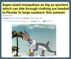 16 Best Mosquito Funny Images Mosquitoes Bugs Hilarious