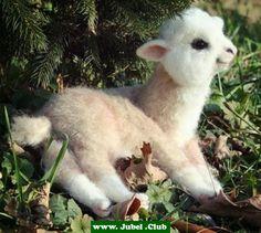 Süßes Lamm