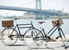 Brooklyn Cruisers! Love biking...especially with Webster in the basket!