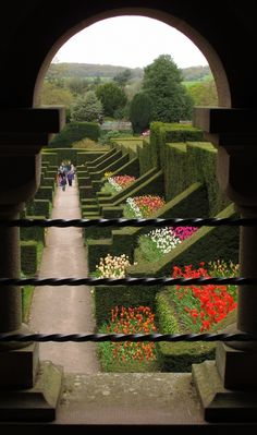 Framed Biddulph Grange tulips, a 19th Century Garden in Staffordshire, England