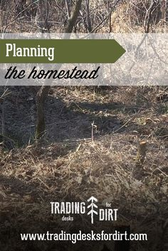 Planning the Homestead