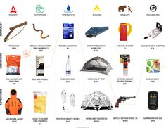 100 Z Day Ideas Survival Zombie Apocalypse Survival Apocalypse Gear