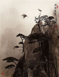 """""""Don Hong-Oai. Photography in the style of a traditional Chinese painting of late Song and Yuan dynasties."""""""