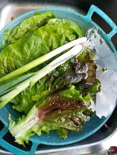 Ciorbă de legume cu verdețuri de primăvară acrită cu măcriș sau borș | Savori Urbane Seaweed Salad, Stevia, Soups, Vegetables, Ethnic Recipes, Food, Green, Salads, Essen