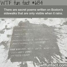 Rainy sidewalks in Boston