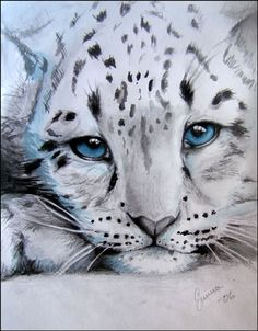 Image detail for -snow leopard cub by ~makebelief on deviantART