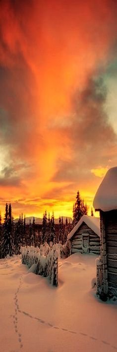 AMAZING SUNSET SCENERY - WINTER SNOW - Staffsvallen, Härjedalen, SWEDEN #QUELLE: #fotografia