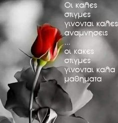 Best Quotes, Love Quotes, Greek Quotes, Cool Words, Lyrics, How Are You Feeling, Wisdom, Thoughts, Humor