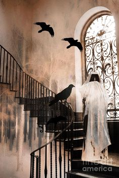gothic-the-grim-reaper-with-ravens-crows