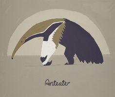Giant Anteater by preshaa, via Flickr