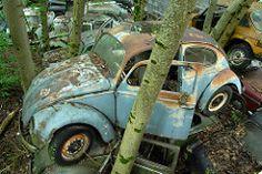 VW Export 1957 (luft-kraftwerk) Tags: cars graveyard car vw volkswagen de switzerland rusty voiture forgotten oldtimer bern junkyard casse tempo wrecks tatra cimetire wrack matador autofriedhof cardump beutler grbetal grbental kaufdorf messerli