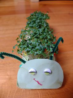 cress caterpillar - egg carton cotton seeds plastic bag to cut liner for the cotton planters Diy Arts And Crafts, Diy Crafts, Cute Diy Projects, Cress, Spring Activities, Craft Activities, Upcycled Crafts, Repurposed, Easter Crafts For Kids